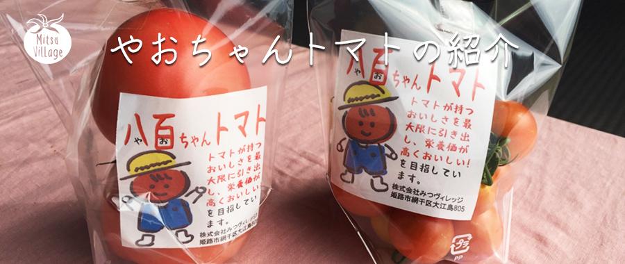 やおちゃんトマトの紹介