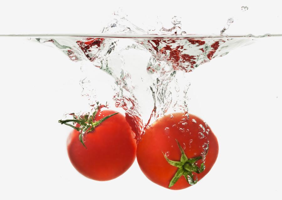 水に沈むトマトは筋肉が引き締まっていて栄養価が高い